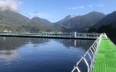 Poseidon Ocean Systems Raises Funds To Accelerate Development Of Sustainable Aquaculture Technologies